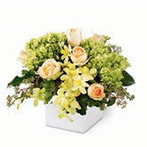 Luminous Charm Orchid Bouquet
