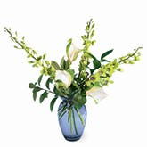 Envious Green Orchid Arrangement