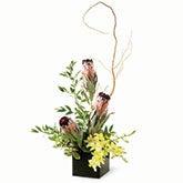 Mink Protea Bouquet