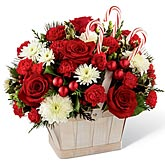 Peppermint Delight Holiday Bouquet