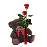 Single Red Rose And Teddy Bear