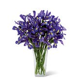 Blue Iris Treasures Bouquet