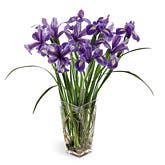 Stately Iris Bouquet