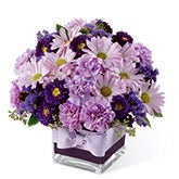 Bountiful Daisy Purple Flower Bouquet
