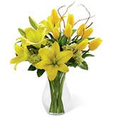 Joyous Yellow Lily Bouquet