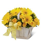 Sunshine Yellow Daisy Bouquet