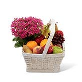 Kalanchoe & Fruit Basket