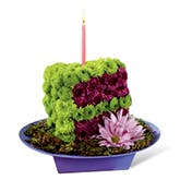 Birthday Cake Slice Flower Bouquet