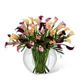Luxury Calla Lily Bouquet