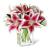Starlight Pink Lily Bouquet