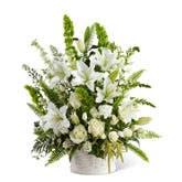 Oriental Lily Sympathy Arrangement