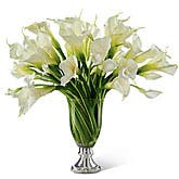 Graceful Calla Lily Bouquet