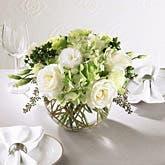 White & Green Splendor