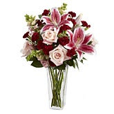 Dark Beauty Stargazer Lily Bouquet