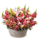Pretty Pink Pasture Basket