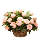 Light Pink Rose Basket