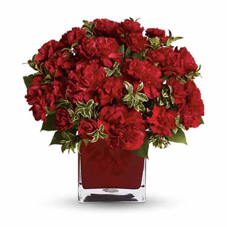 Precious Love Red Carnations Bouquet