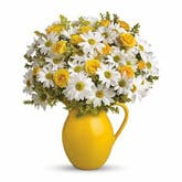 Pitcher Perfect Daisy Bouquet