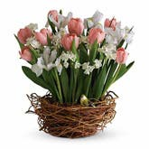 Pink Tulip Bouquet With Songbird