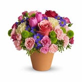 Aspire Pink Rose Spring Bouquet