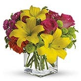 Sunsplash Yellow Lilies