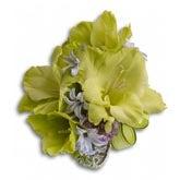 Green Flower Wristlet Corsage