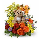 Get Well Teddy Bear Delivery
